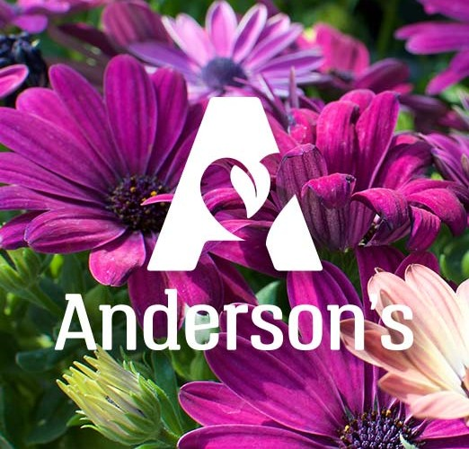 Andersonu0027s : From Greenhouse To Table