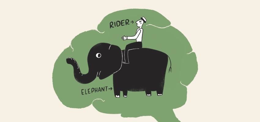 Red Chalk Studios Rider and Elephant Illustration