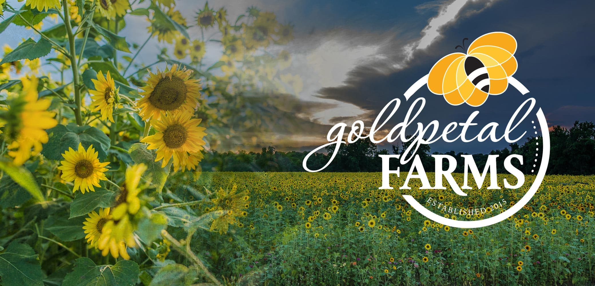 Goldpetal Farms Identity System Design by Red Chalk Studios
