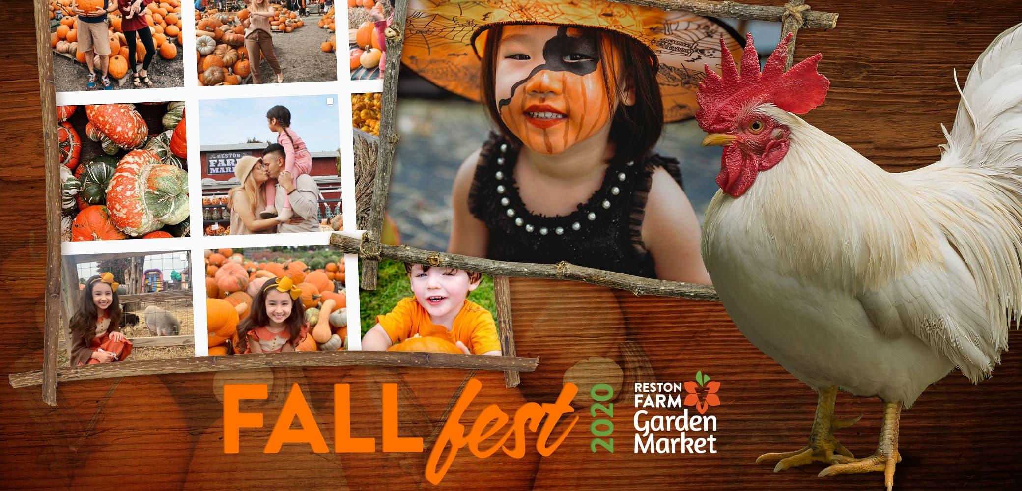 Reston Farm Garden Market Event Marketing by Red Chalk Studios